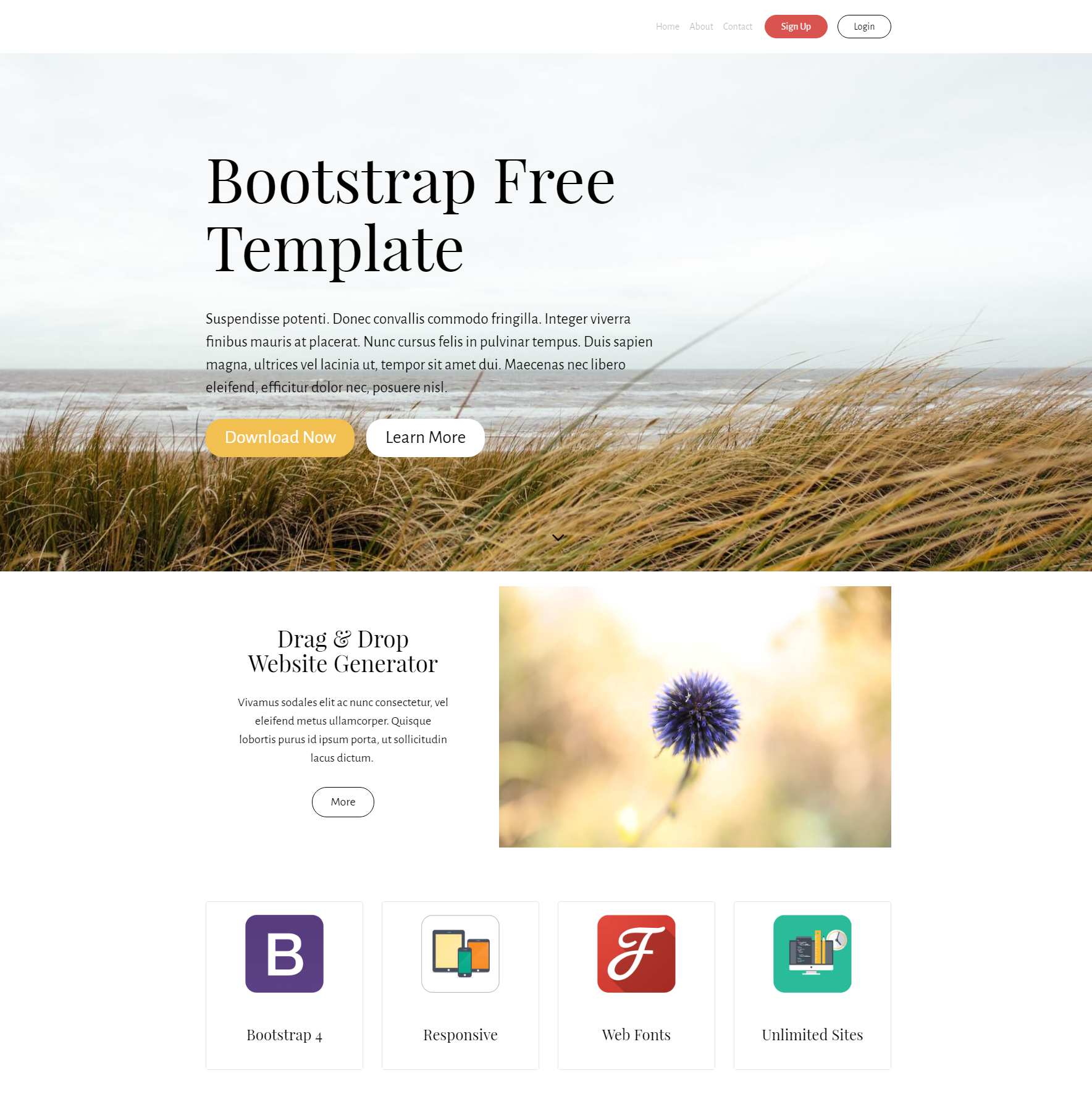 HTML Bootstrap Free Themes